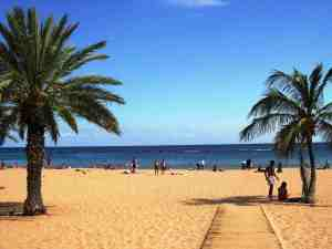 Tenerife-for-Nature-Lovers