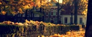 Autumn-in-the-city-autumn-35392312-1365-768-730x300