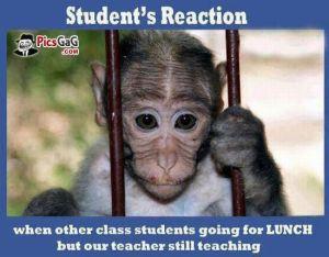 student-meme-funny-jokes